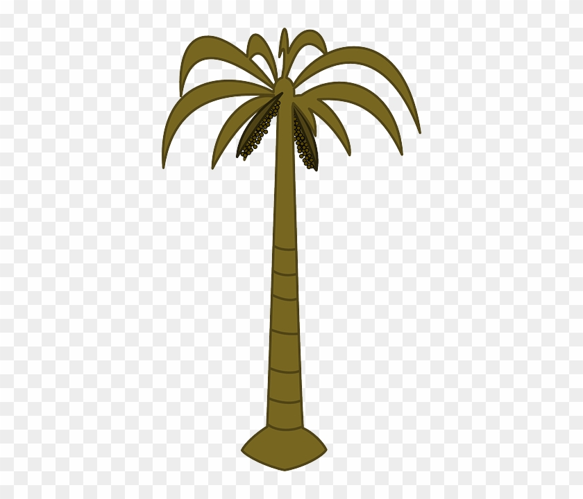 Black, Outline, Drawing, Silhouette, Palm, Tree, White - Palm Tree Clip Art #9667