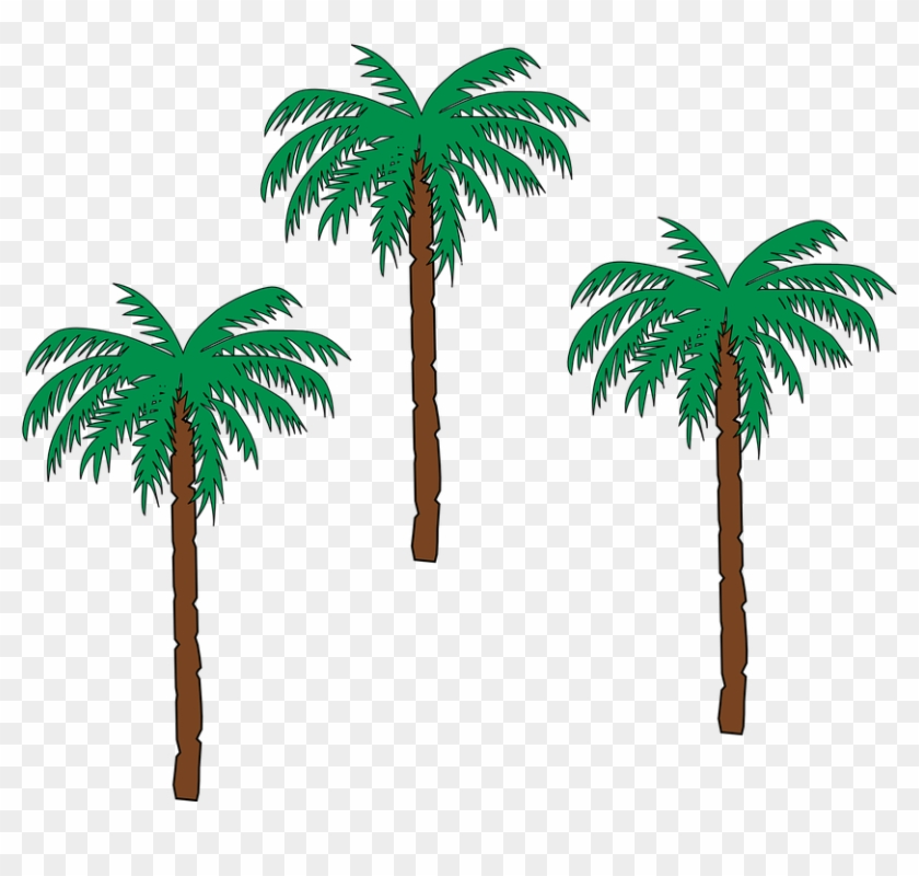 Palm Tree Clipart Pohon - Haiti Coat Of Arms #9669