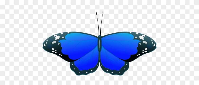 Blue Butterfly Clipart - Clipart Blue Butterfly #9699