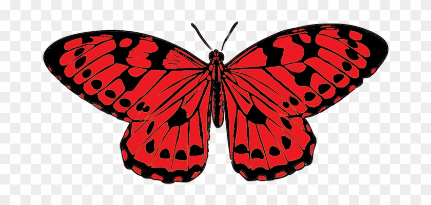 Black Red Butterfly Clip Art Png Clipart - Red And Black Butterfly #9763