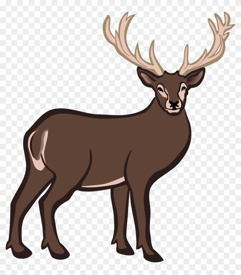 Free Clipart Of A Buck Deer - Gambar Rusa Berwarna #9799