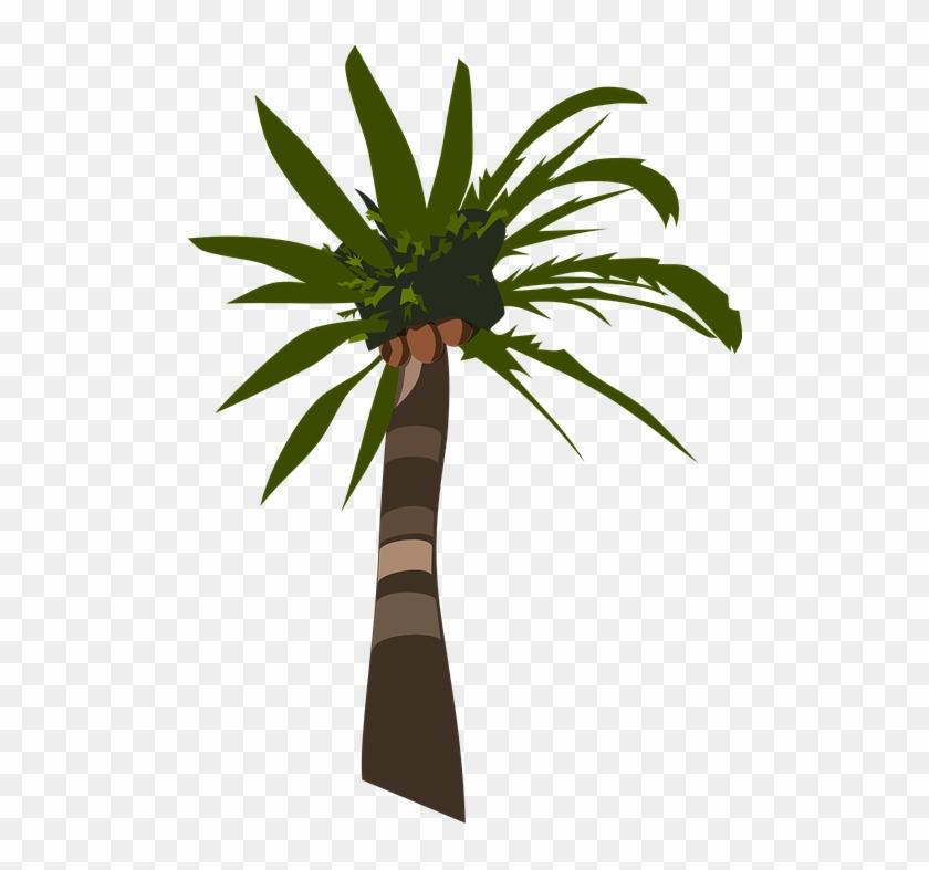 Palm Tree Clipart Pohon - Palm Tree Clip Art #9798