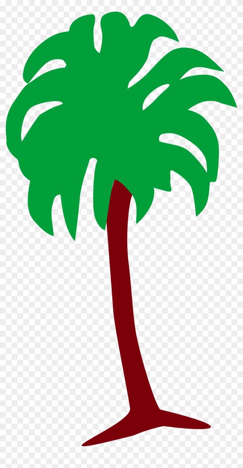 Palm Tree 3 - Tree #9833