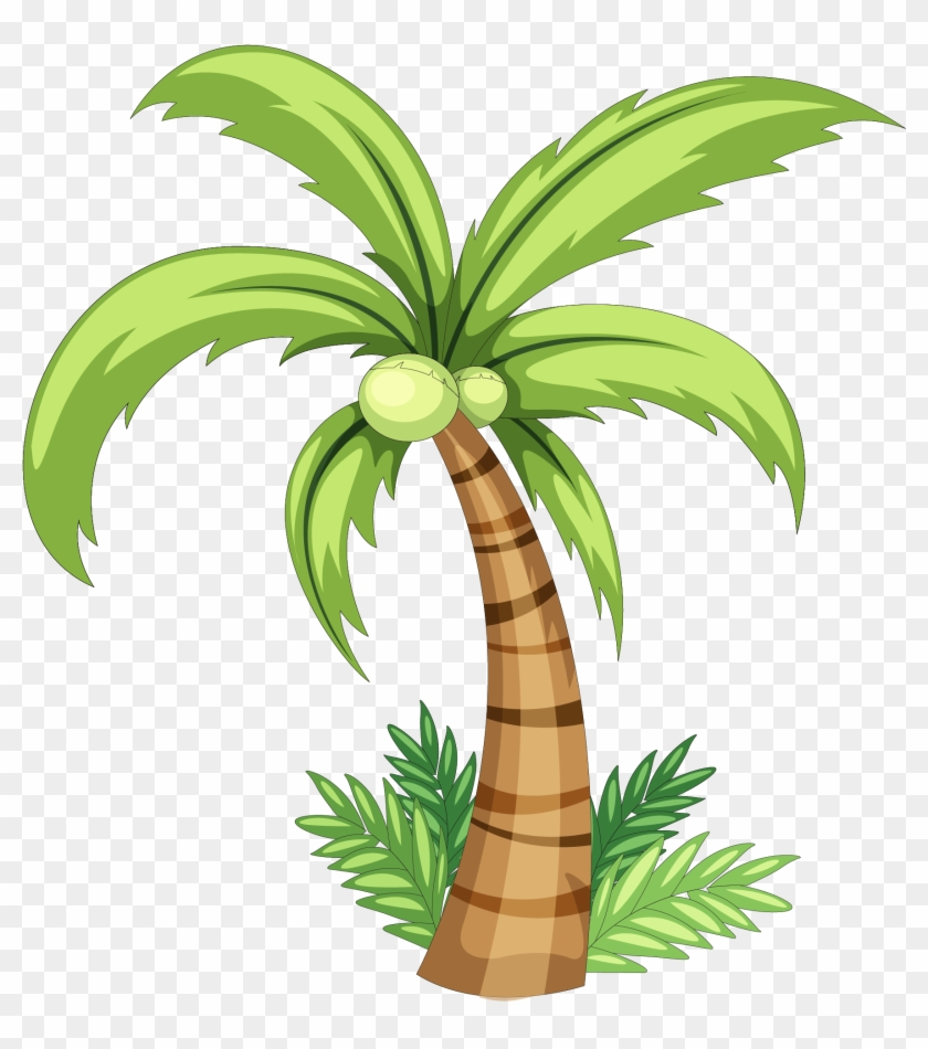 Coconut Drawing Clip Art - Simple Coconut Tree Drawing #9862