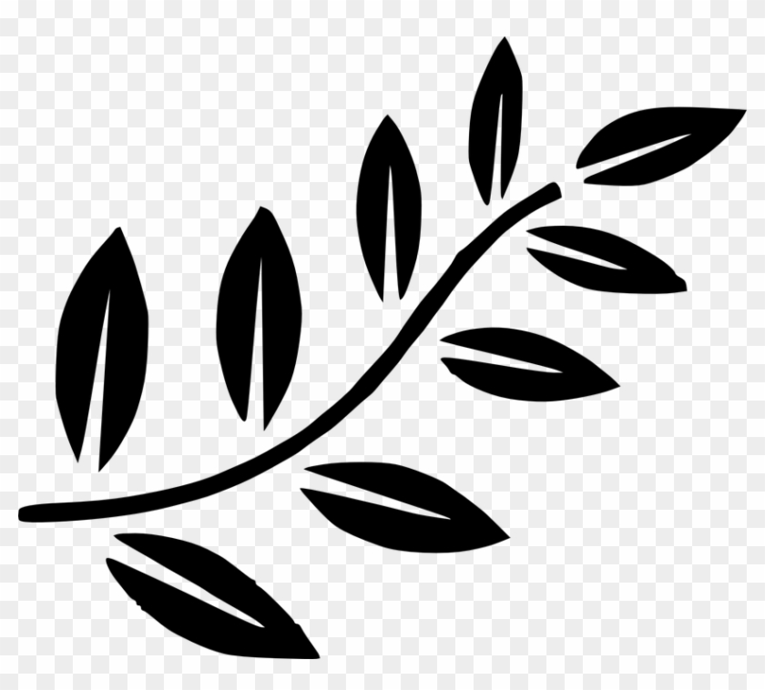 Fern Leaves Green Palm Tree Branches Branch - Olive Branch Clip Art #9871