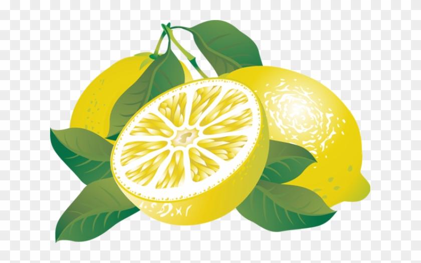 Lemon Clip Art Free Clipart Images 2 - Citrus Clipart #9955
