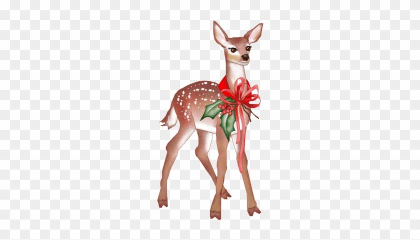 Blog De L'ile De Kahlan - Deer #10147