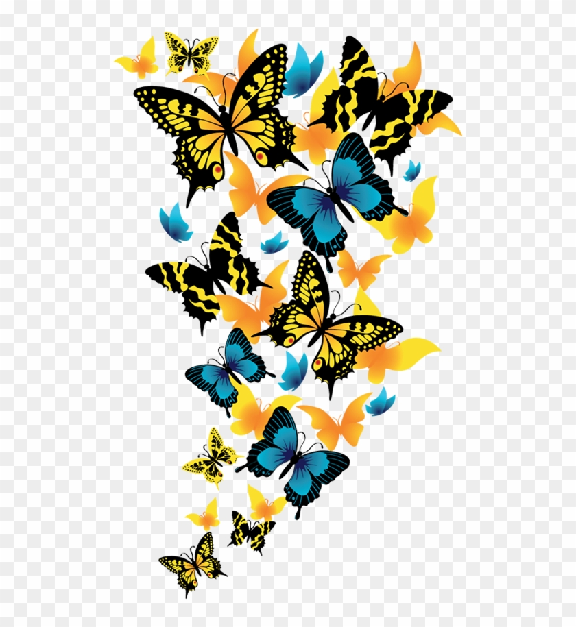 Butterflies Clipart Picture - Png Format Butterfly Png Background #10164