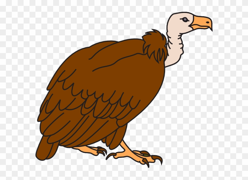 Clipart Image Of Vulture #10224