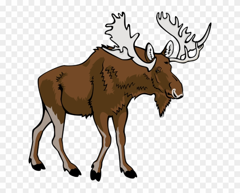 Moose Clipart Free Download Clip Art On - Free Clip Art Moose #10254