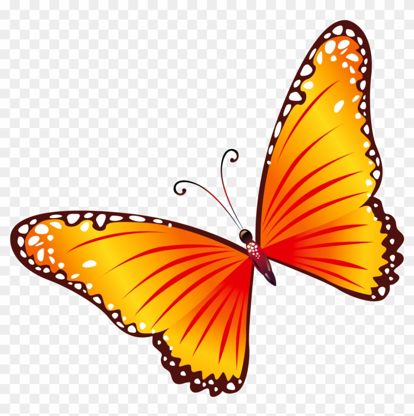 Clip Art Free Butterflies - Red And Yellow Butterfly #10527