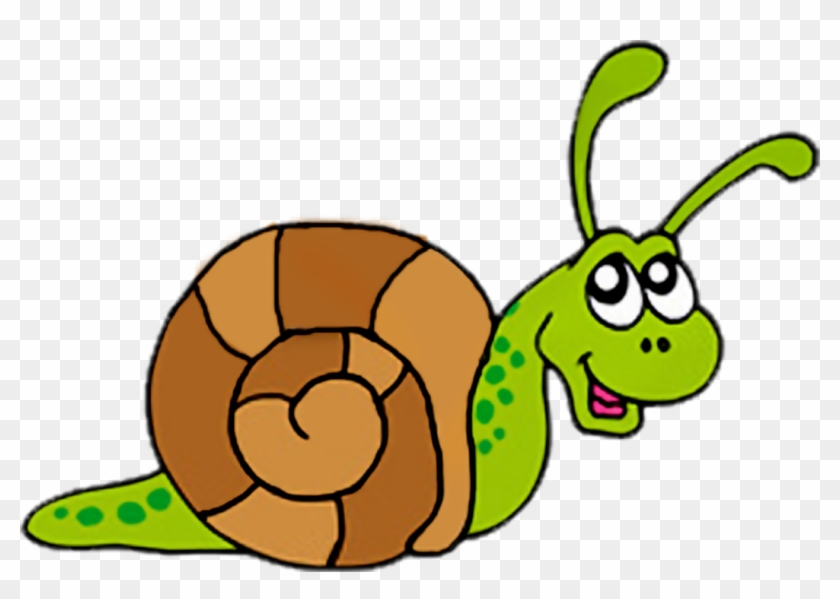 Pta Meeting Clip Art Additionally Snail Clip Art Free - Clip Art Picture Of Snail #10560