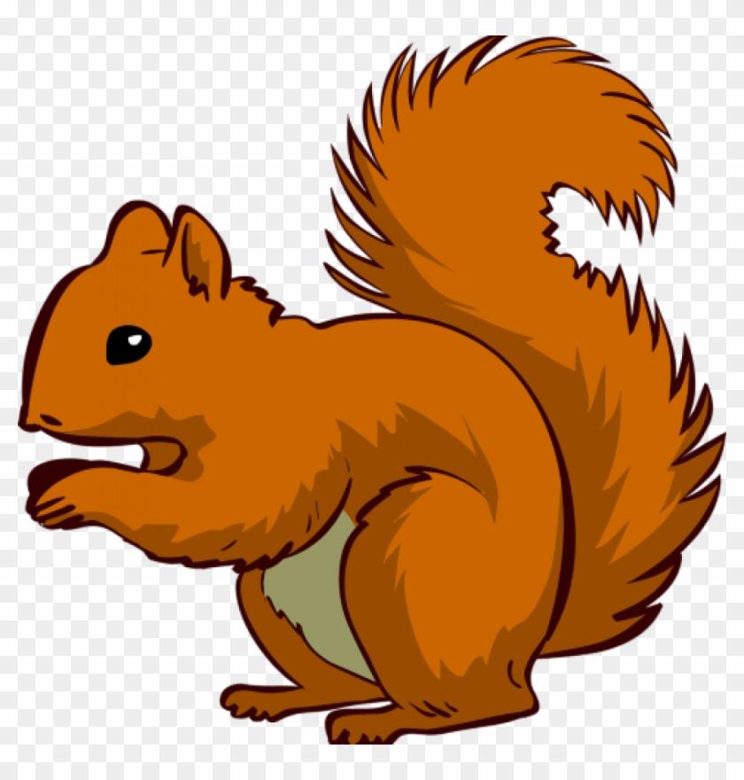 Squirrel Clipart Squirrel Clip Art Squirrel Clipart - Squirrel Clipart #10609