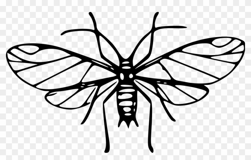 Mosquito Clipart - Mosquitoes Clipart Black And White #10661