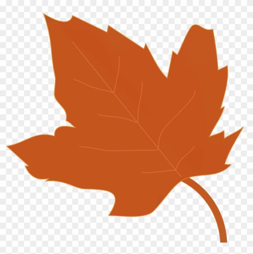 Autumn Leaves Clipart Fall Leaves Clip Art Beautiful - 낙엽 도안 #10695