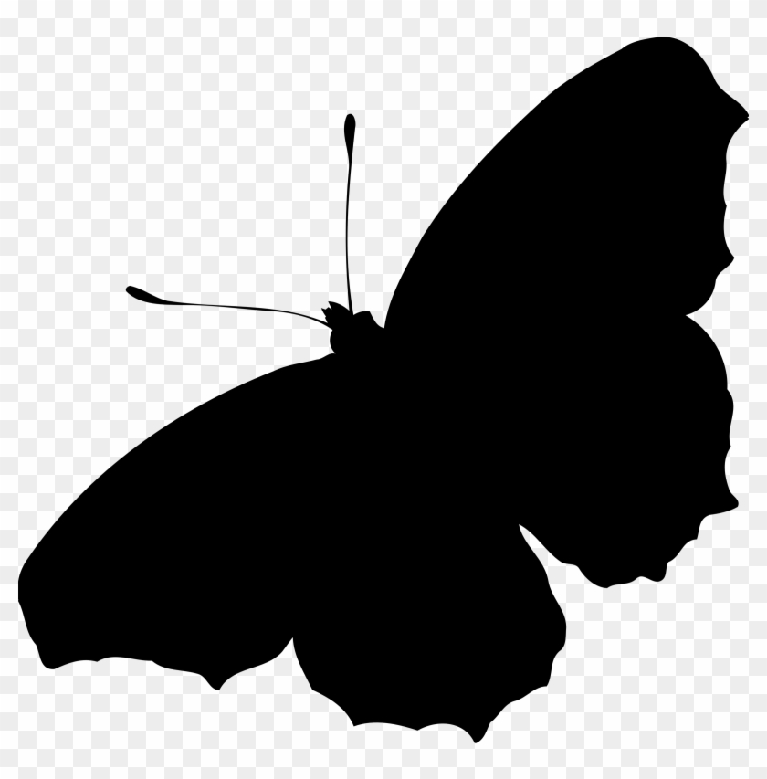 Peacock Butterfly Icons Png - Butterfly Silhouette Png #10824