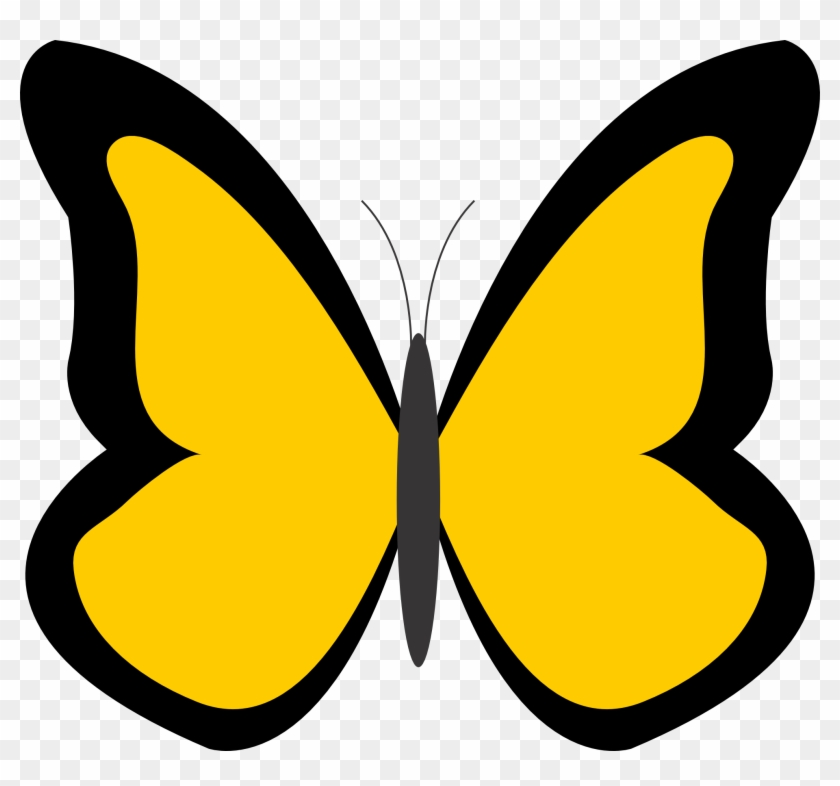 Butterfly Clip Art Free Clip Art Image - Butterfly With Color Clipart #10870