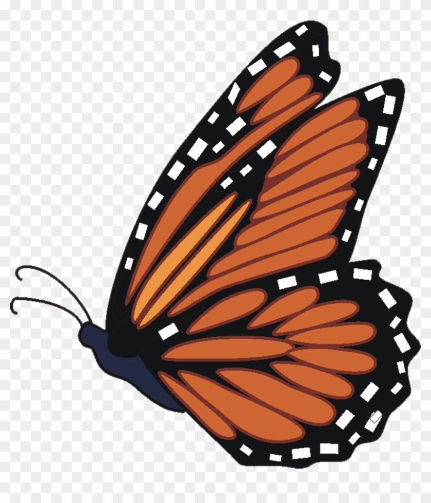 Butterfly Clip Art - Free Clip Art Monarch Butterfly #10897