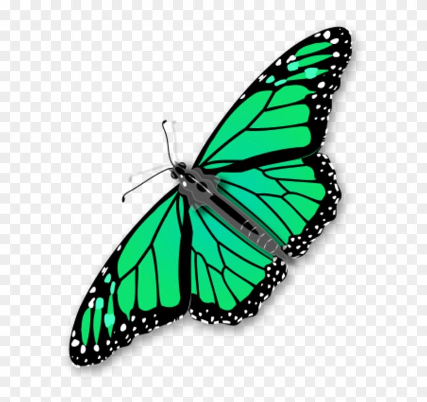 Monarch Butterfly Vector Clip Art - Monarch Butterfly Vector Clip Art #10955