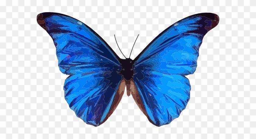 Blue Butterfly Clip Art - Blue Butterfly Clipart Transparent #10964