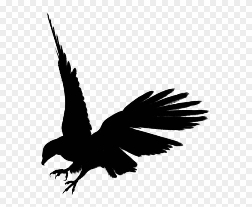 Flying Dragon Silhouette - Eagle Silhouette #10998