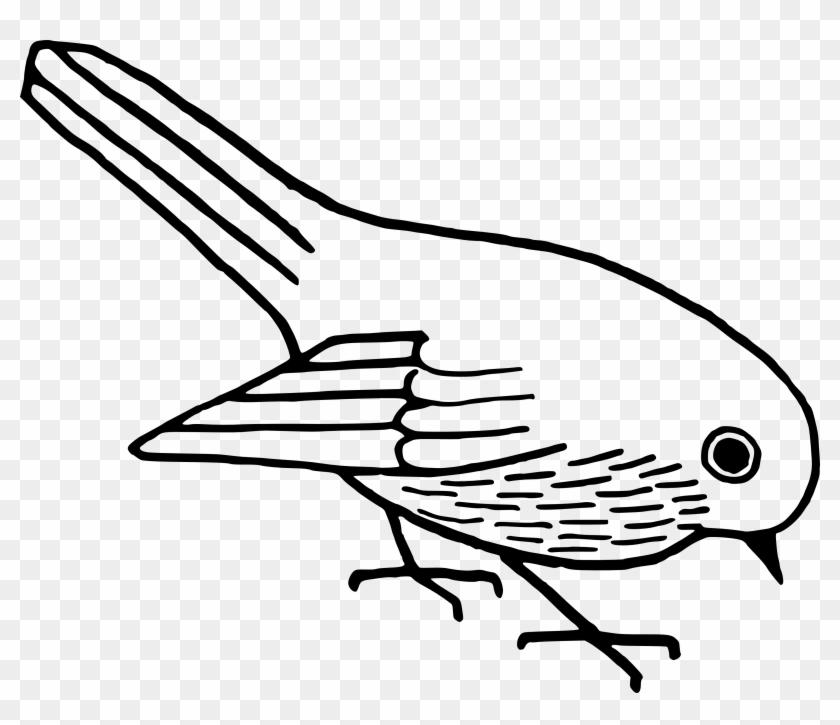 Download Free Clip Art Bird - Bird Vector Black And White #11031