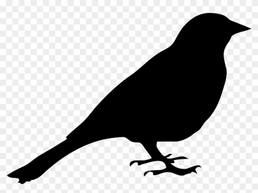 Blackbird Clipart Transparent - Silhouette Of Pigeon #11151
