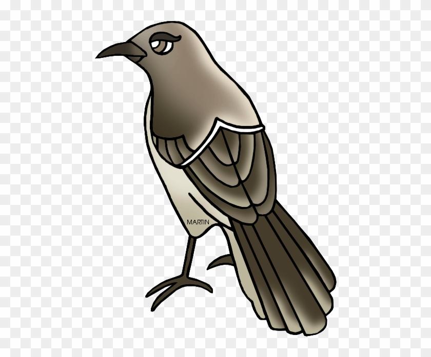 Free Vector Mockingbird Clip Art Clipart - Mockingbird Clipart #11186