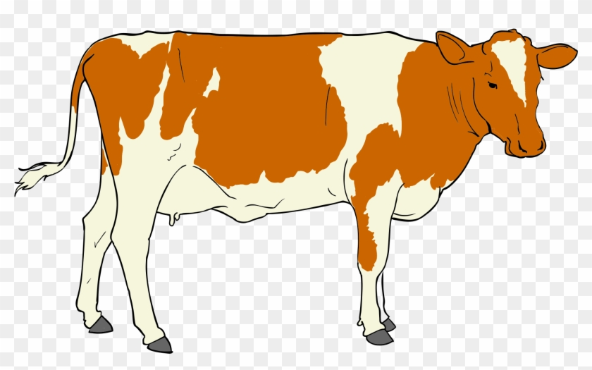 Cow Clipart - Beef Janata Party #11198