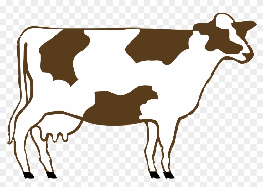 Brown And White Cow - Cow Clip Art #11201