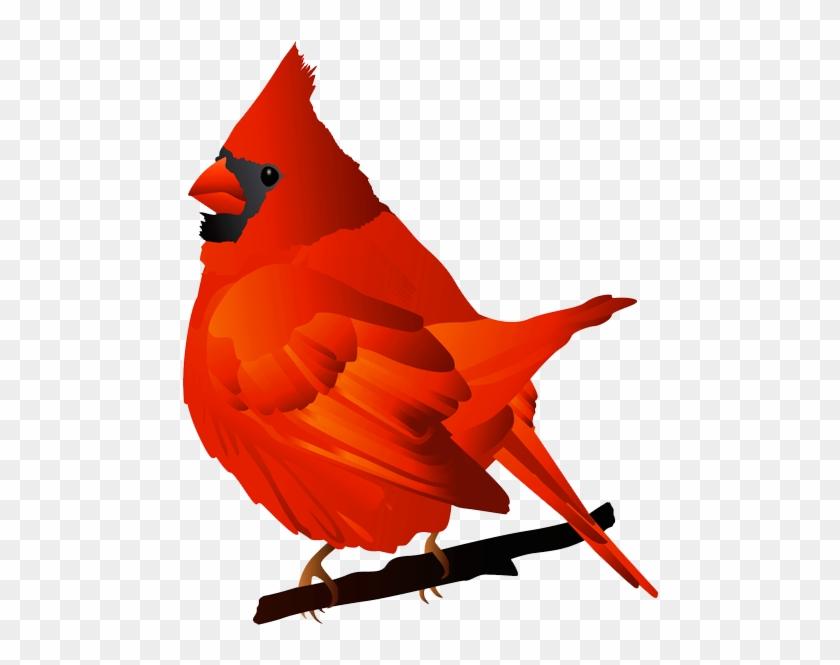Cardinal Bird Clip Art - Cardinal Clip Art #11301