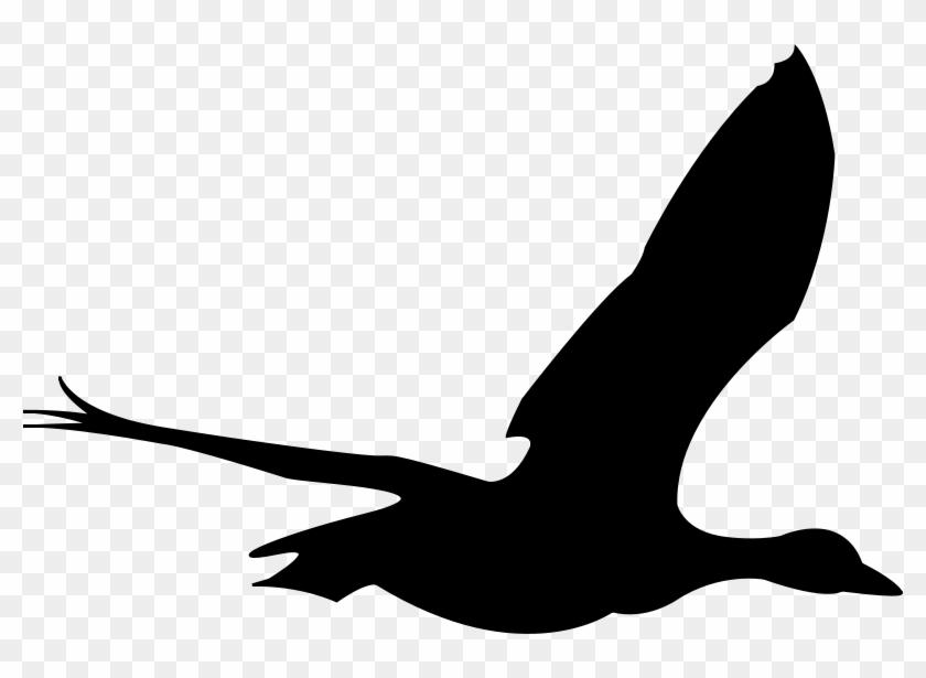Sea Bird Clipart Animated - Clip Art Flying Bird #11303