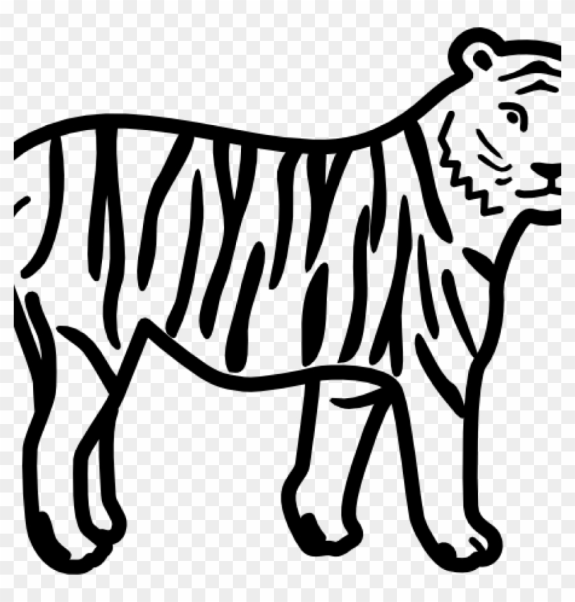 Tiger Clipart Black And White Tiger Clip Art Black - Outline Pictures Of Animals #11557