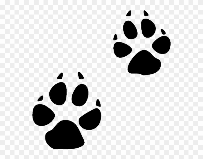 Coyote Clip Art - Animal Footprint Clip Art #11743