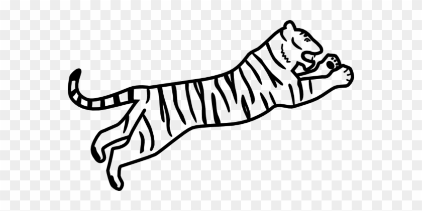 Tiger Black And White Tiger Clipart Black And White - Bengal Tiger Easy Drawing #11788