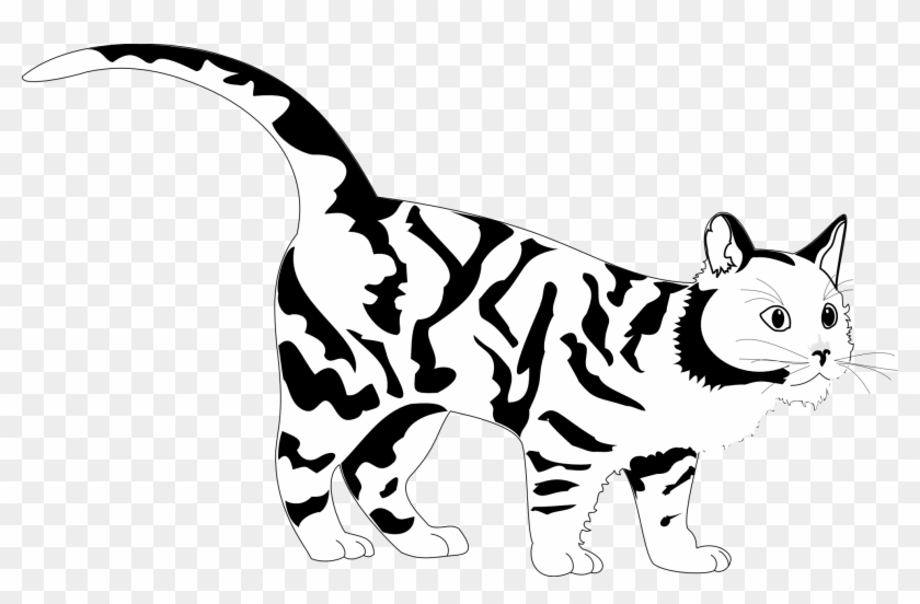 Tiger Cat Black White Line Art Coloring Sheet Colouring - Clip Art #11792