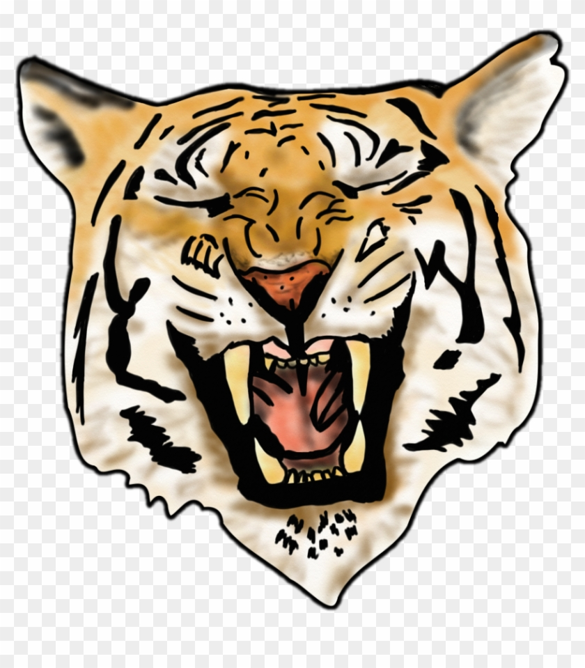 Airbrush Tiger Image - Colors Tiger Vector #11823