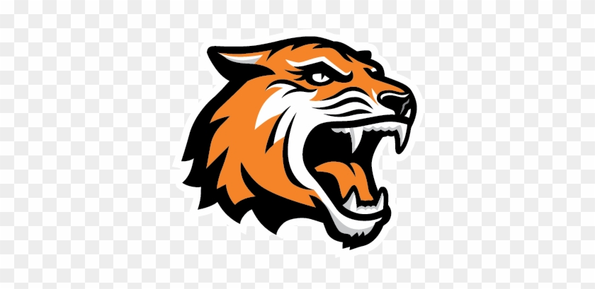 Tiger Face Clipart Png Images Free - Rochester Institute Of Technology Mascot #11826