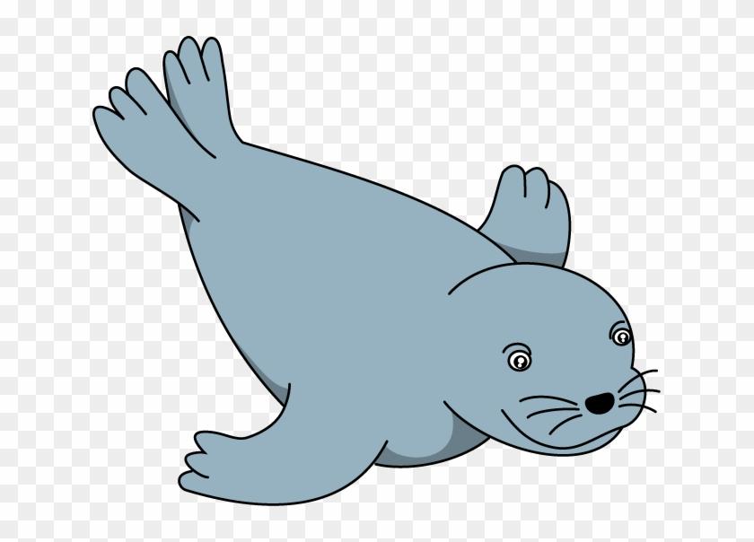 Sea Lion Clip Art - Seals Clip Art #12202