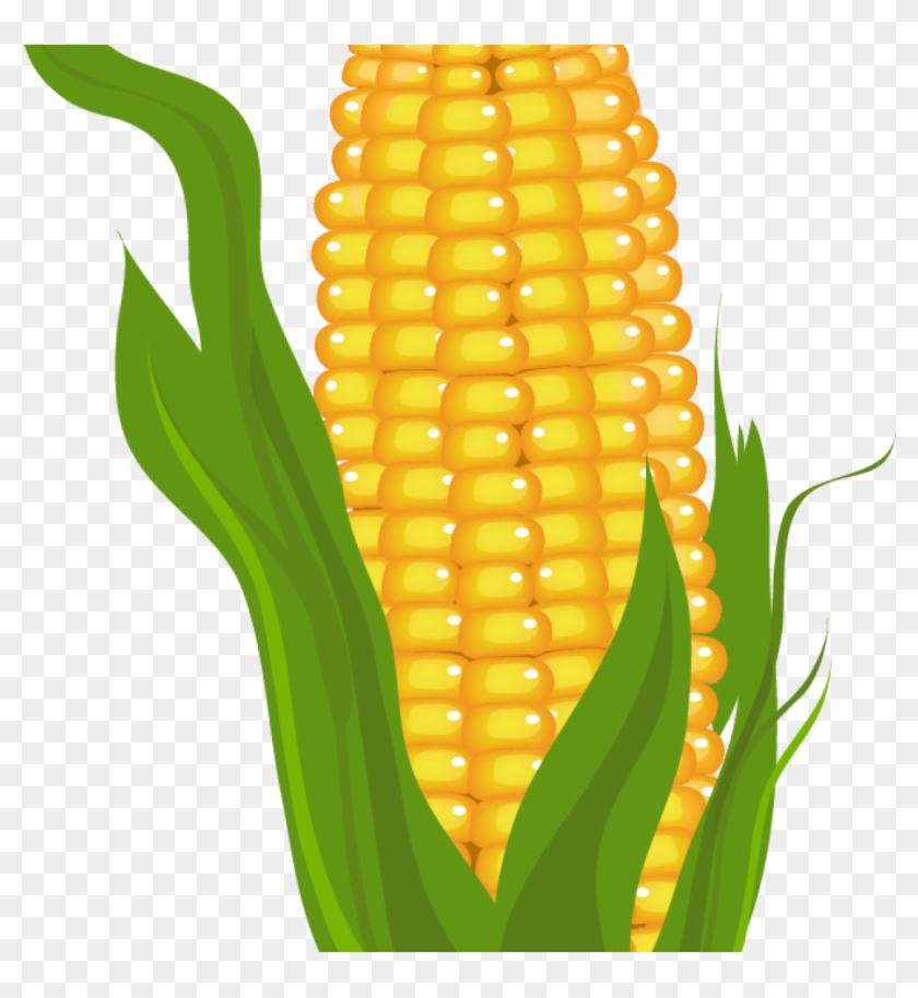 Corn Clipart Corn Clip Art Free Free Clipart Images - Free Clip Art Corn #12393