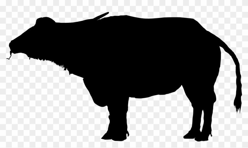 Water Buffalo Clipart Silhouette - Water Buffalo Silhouette #12452