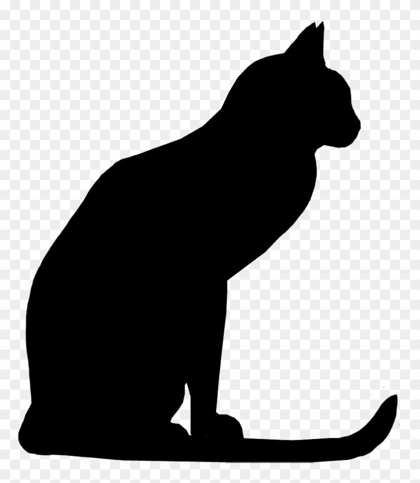 Attentive Cat Silhouette - Black Cat Silhouette Png #12572