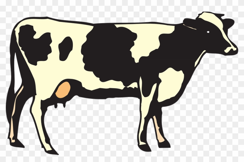 Cow Clip Art - Mexican Word Of The Day Glasses #12650