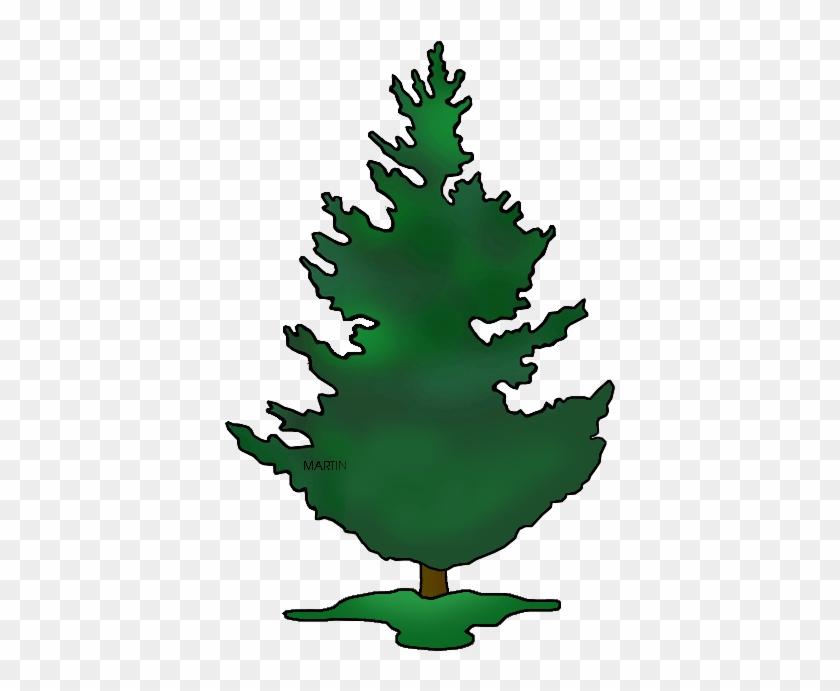 United States Clip Art By Phillip Martin, State Tree - Oregon Tree Clip Art #12981