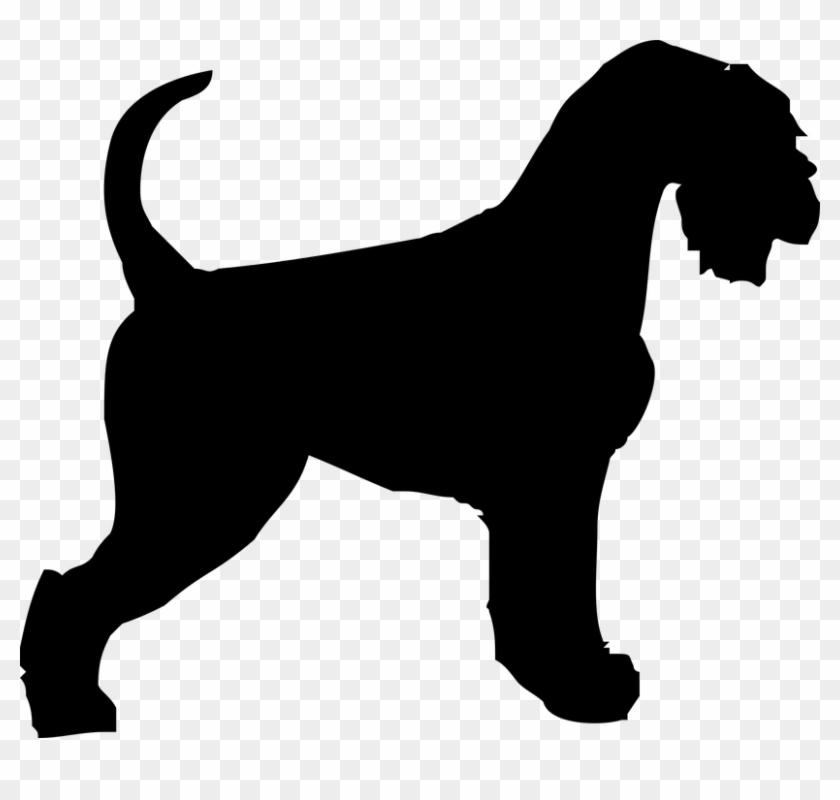 Schnauzer Dog Doggy Outline Animal Coat Shape - Beagle Silhouette #13025