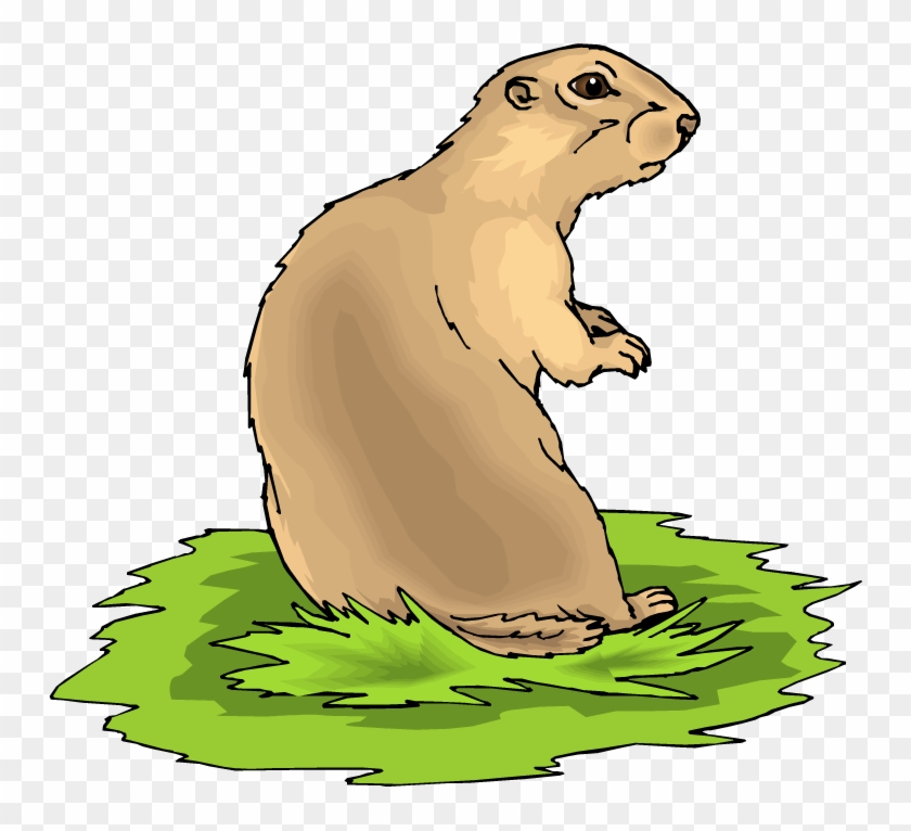Free Prairie Dog Clipart - Black Tailed Prairie Dog Clipart #13444