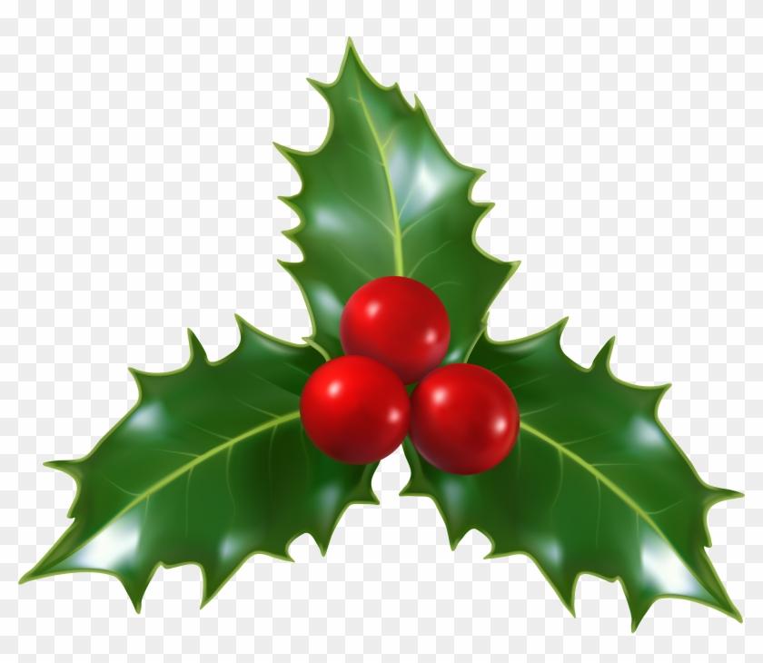Mistletoe Png #13726