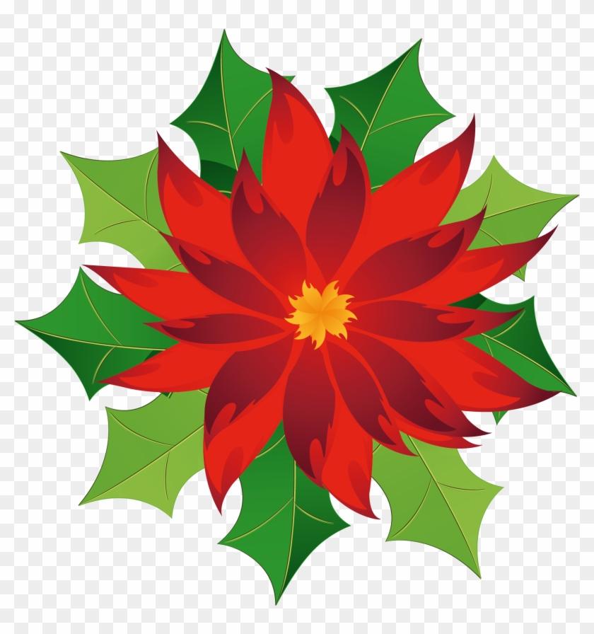 Christmas Poinsettia Clipart - Poinsettia Clipart Png #14063
