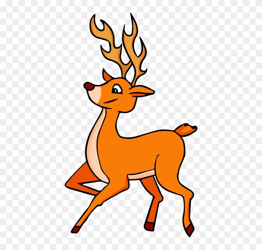 Deer Clip Art Pictures Free Clipart Images - Deer Clipart Png #14480