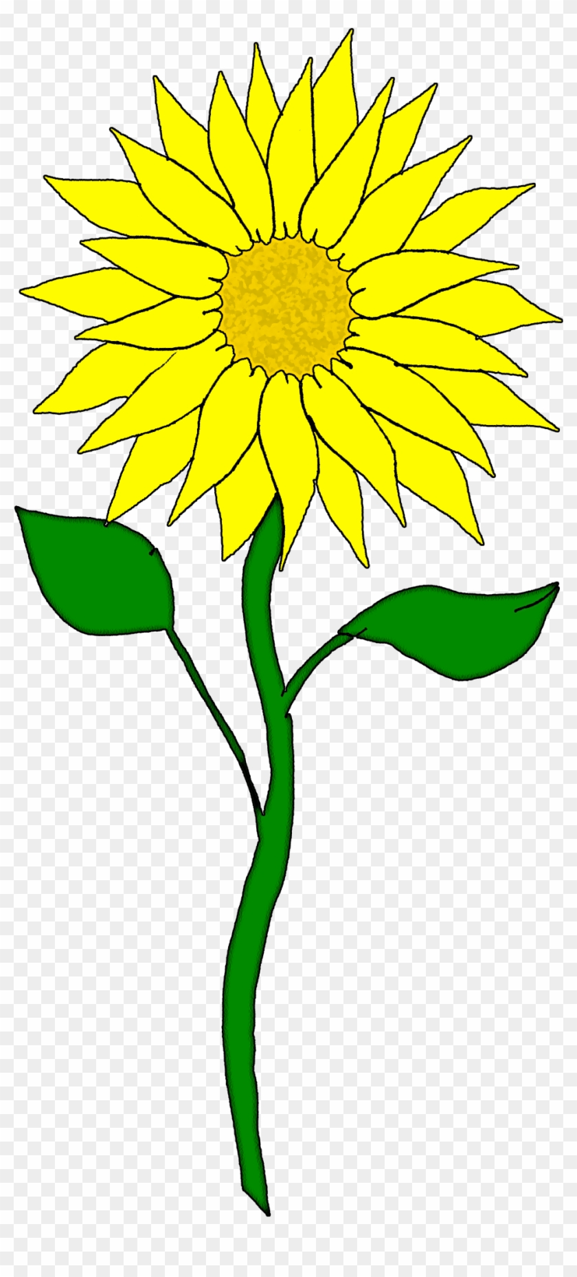 Free Flower Clipart - Sunflower Clipart #14528